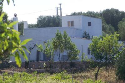 antica masseria in pietra con ulivi in vendita vicino ad ostuni