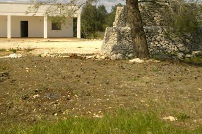 villa con trullo e bellissimo giardino in vendita a carovigno