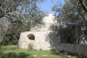 Trullo stone with widening project with olive trees and vineyard for sale in Puglia