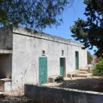 дом с оливковыми деревьями для продажи в Апулии