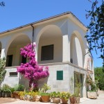 villa with 6 rooms with garden for sale near Carovigno in Puglia
