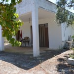 farmhouse with olive trees ideal for b & b in the nature reserve in Puglia