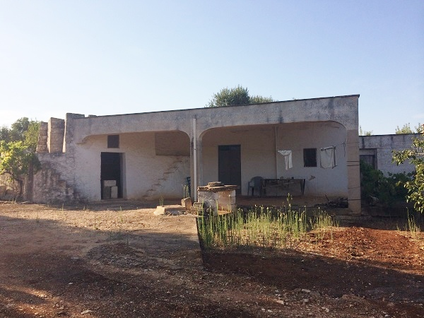 Lamia Trullo with ancient olive trees for sale in Carovigno