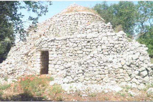 trullo saraceno mq 40 00Trullo saraceno  in pietra con progetto di ampliamento e con ulivi in vendita vicino a Carovigno